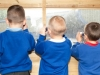 Cavendish Primary School 002